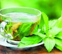تعرف على فوائد شرب الشاي الاخضر