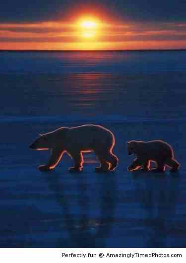 Beautiful-shot-of-Arctic-Sunset-resizecrop--