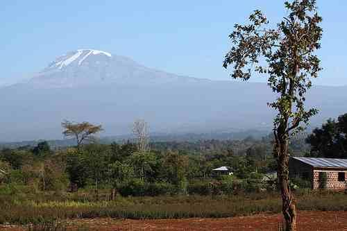 Campi-Ya-Kanzi-Mount-Kilimanjaro