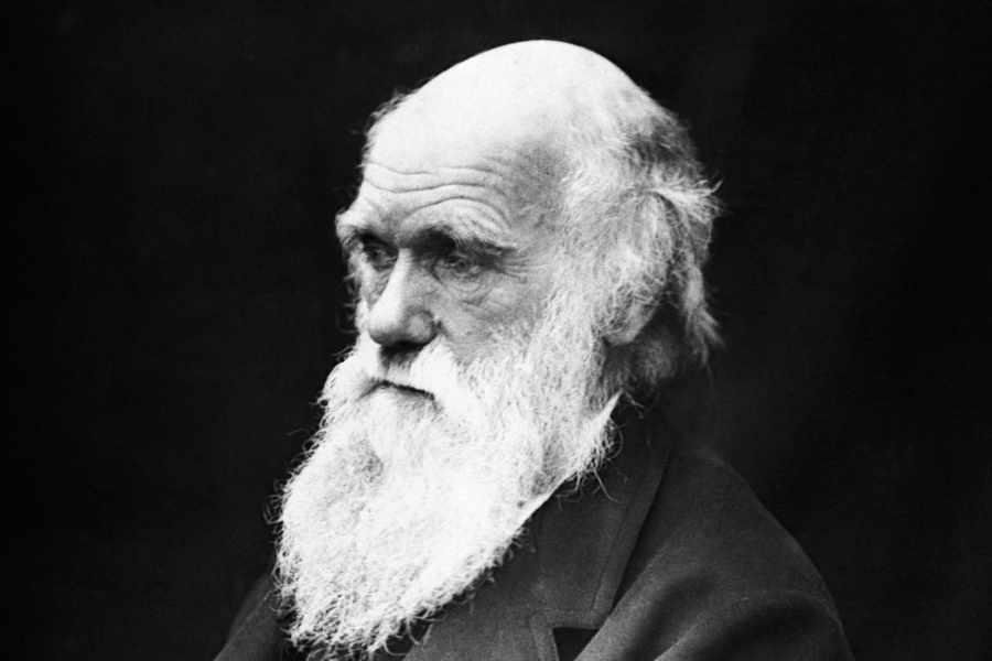 تشارلز روبرت داروين  Charles Robert Darwin
