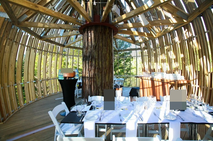 Yellow-Treehouse-Restaurant-3