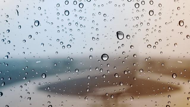 elcamino-gotas-de-lluvia-la-naturaleza-galeria-358004