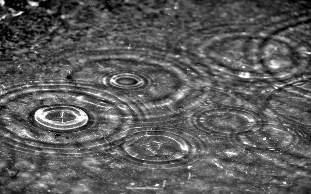 gotas-de-lluvia-wallpapers_4176_2560x1600