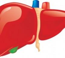 4 أنواع من الطعام تحافظ على أداء الكبد