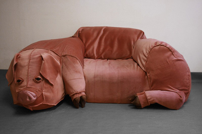 pig-couch