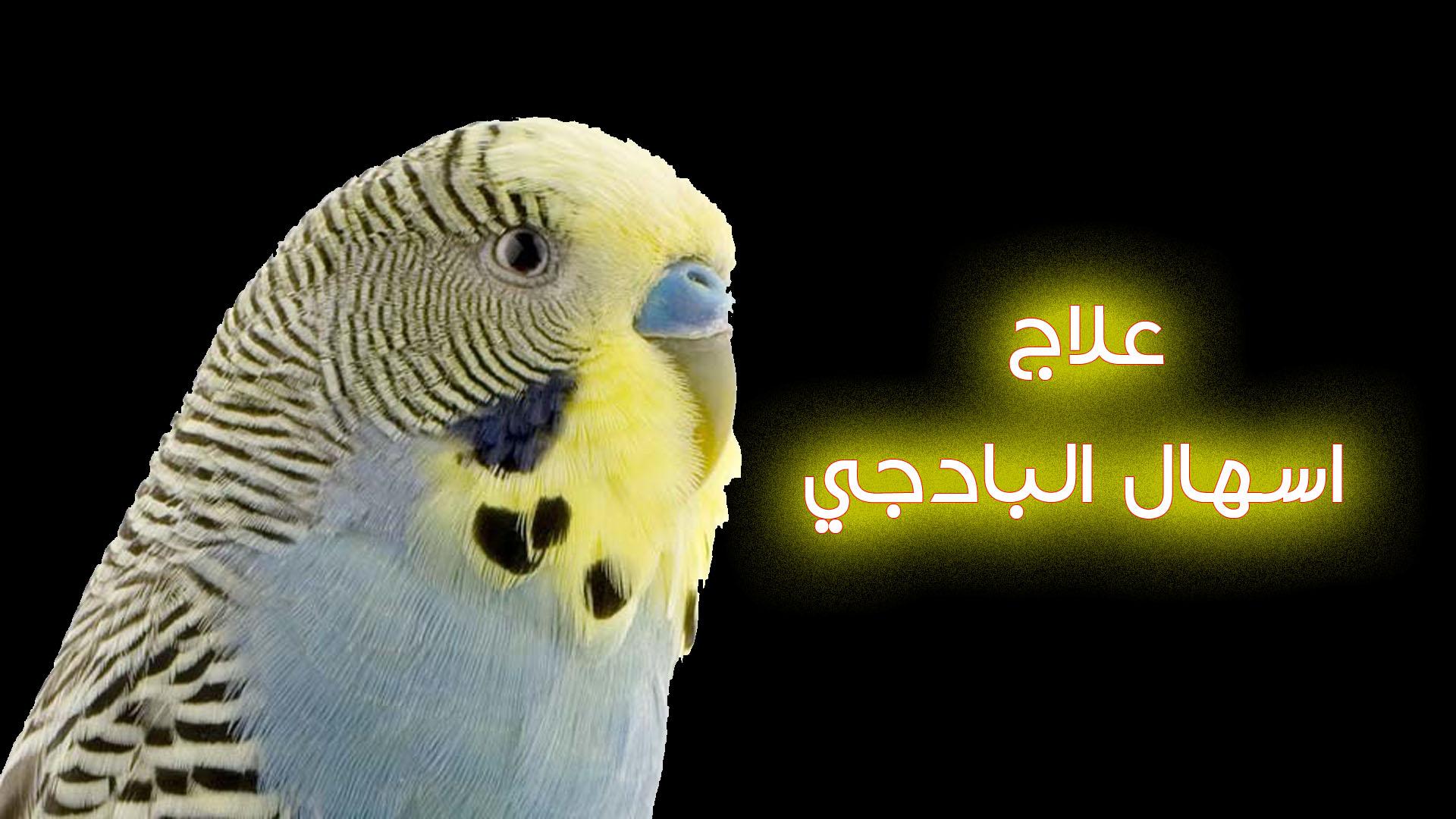 اسهال_البادجي