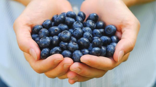 تعرّف على فوائد التوت الازرق