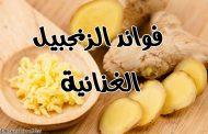 فوائد الزنجبيل الغذائية