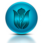 050376-blue-metallic-orb-icon-natural-wonders-flower27-sc44