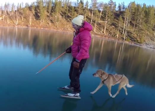 شاهد بالفيديو : السير على سطح الماء