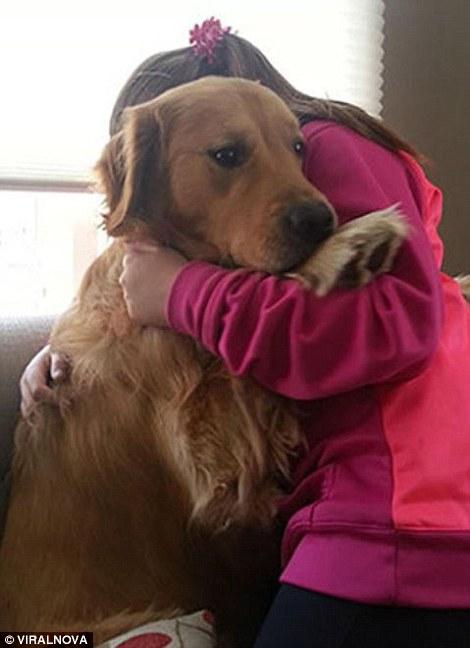 بالصور : حيوانات تكره الطبيب البيطري