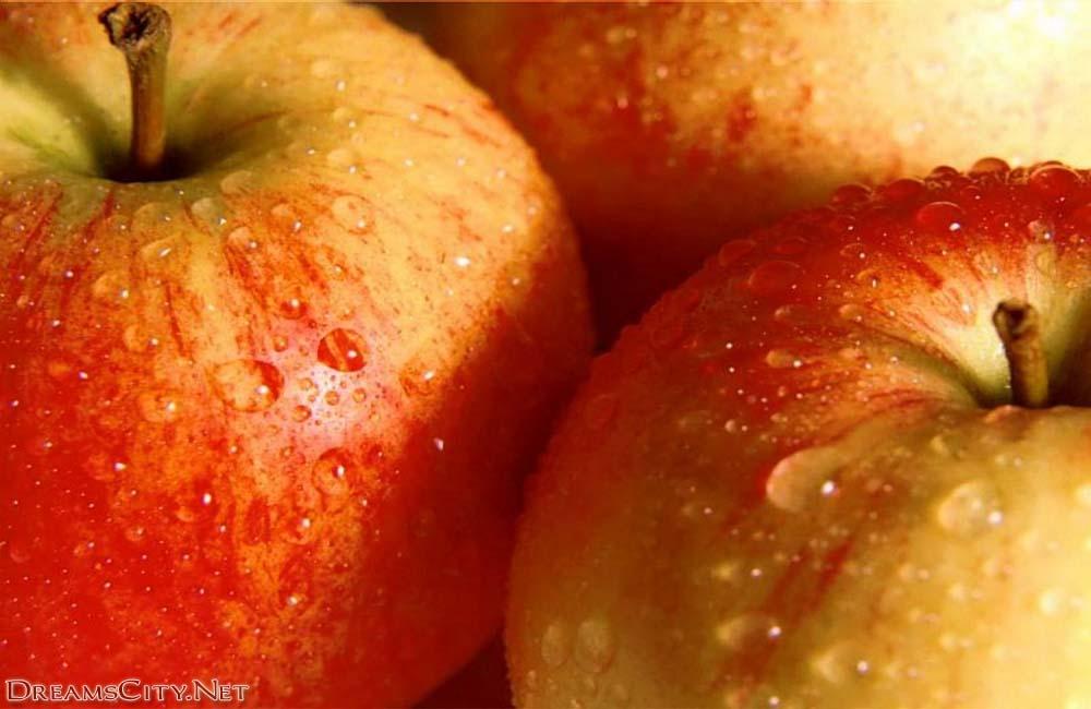 Fruits (5)