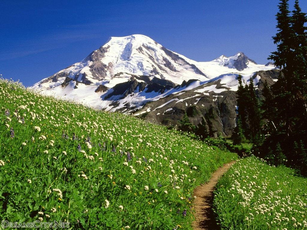 Mountains (12)