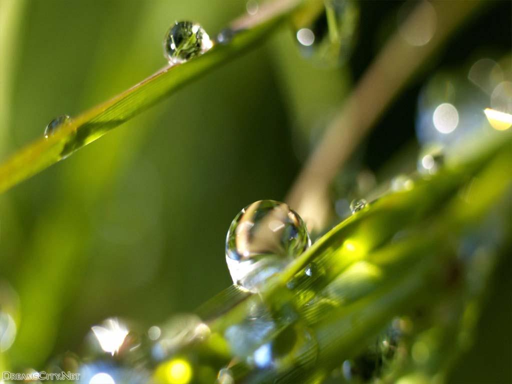 Water-drops10