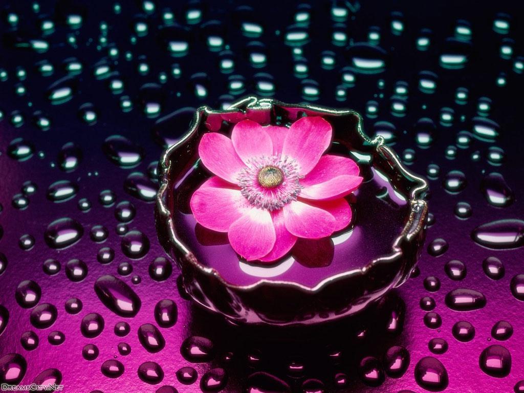 flower_water-11