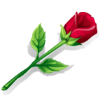 flowers icon red ‫(1)‬
