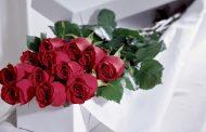 ورود حمراء رومانسية روعة