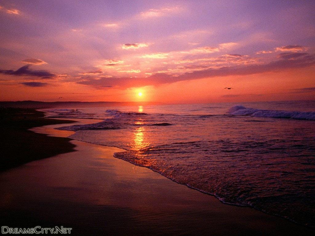 sunset (14)